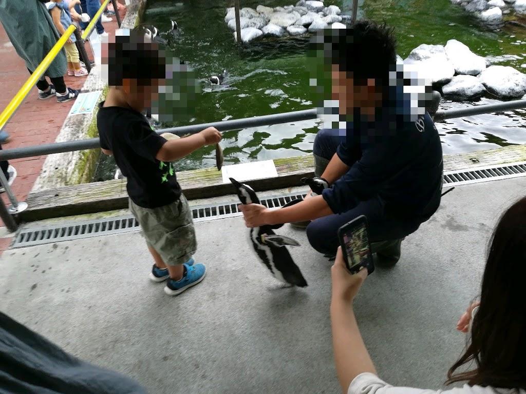 掛川花鳥園へ